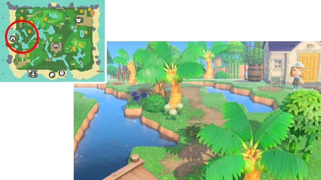 島クリ、ジャン宅画像2